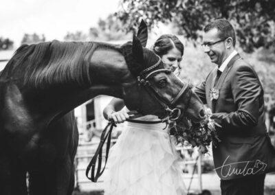 Wedding-149-980x654