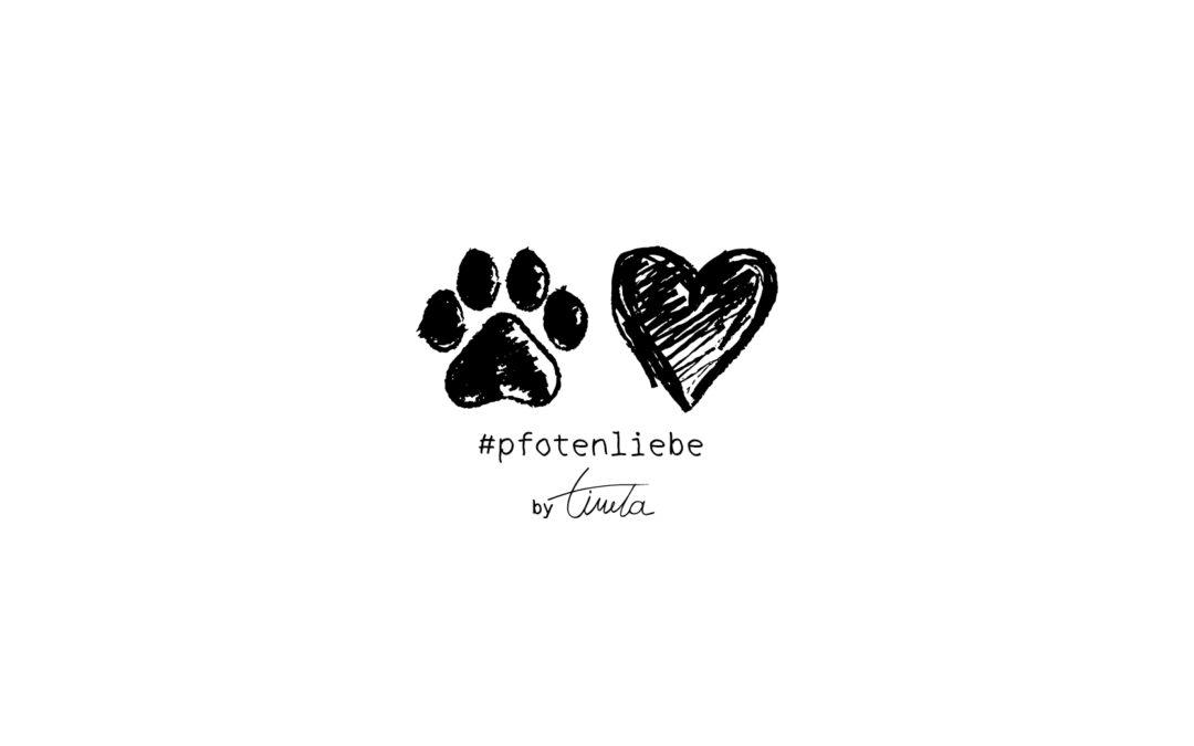 #pfotenliebe: Mein bester Freund